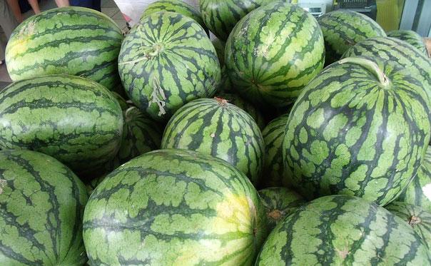 How Do Watermelon Grow