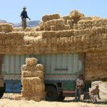 Hay Farming Equipment