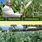 Kenya Seed Company